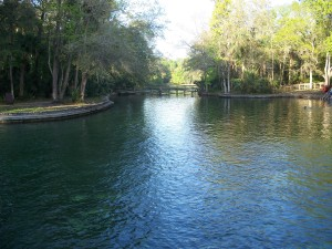 Wekiwa Springs in Apopka is one of over 900 springs in Florida