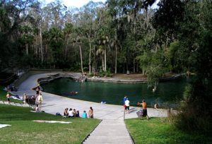 Spring Pool at Wekiwa Springs State Park