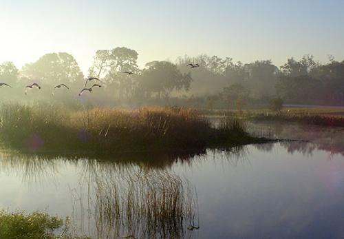 Winter Haven Chain of Lakes, Florida sunrise photo, SW Florida Water Management System>