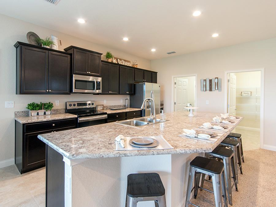 Spacious Shelby new construction home in Mulberry, FL